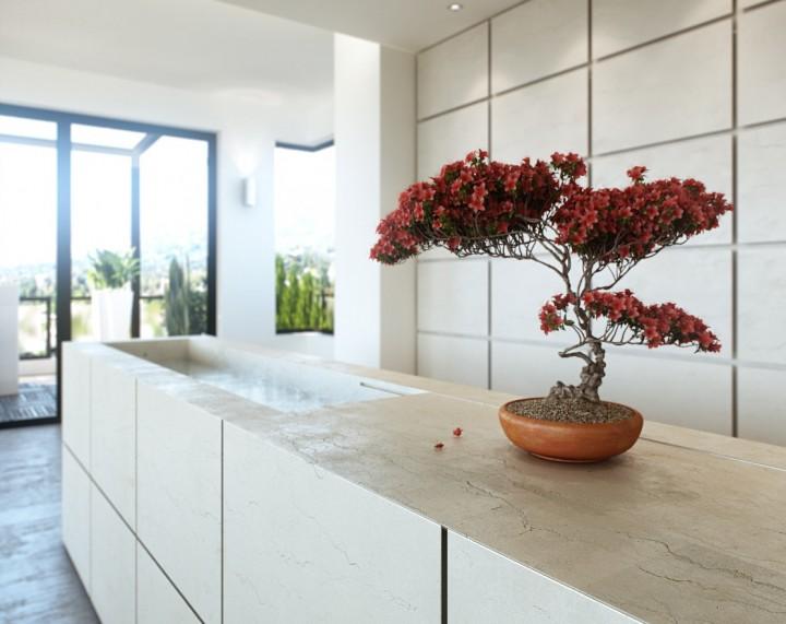 Unique-Bonsai-Interior