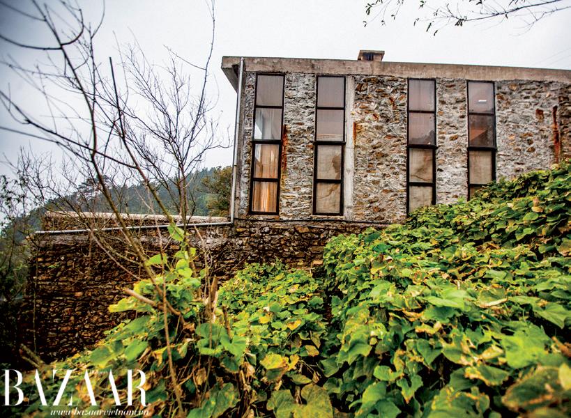 Ngôi nhà nằm ở lưng chừng đồi, được bao phủ bởi giàn su su xanh mát