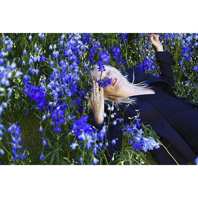 Các bức ảnh trên Instagram tràn ngập hoa tím của Dior