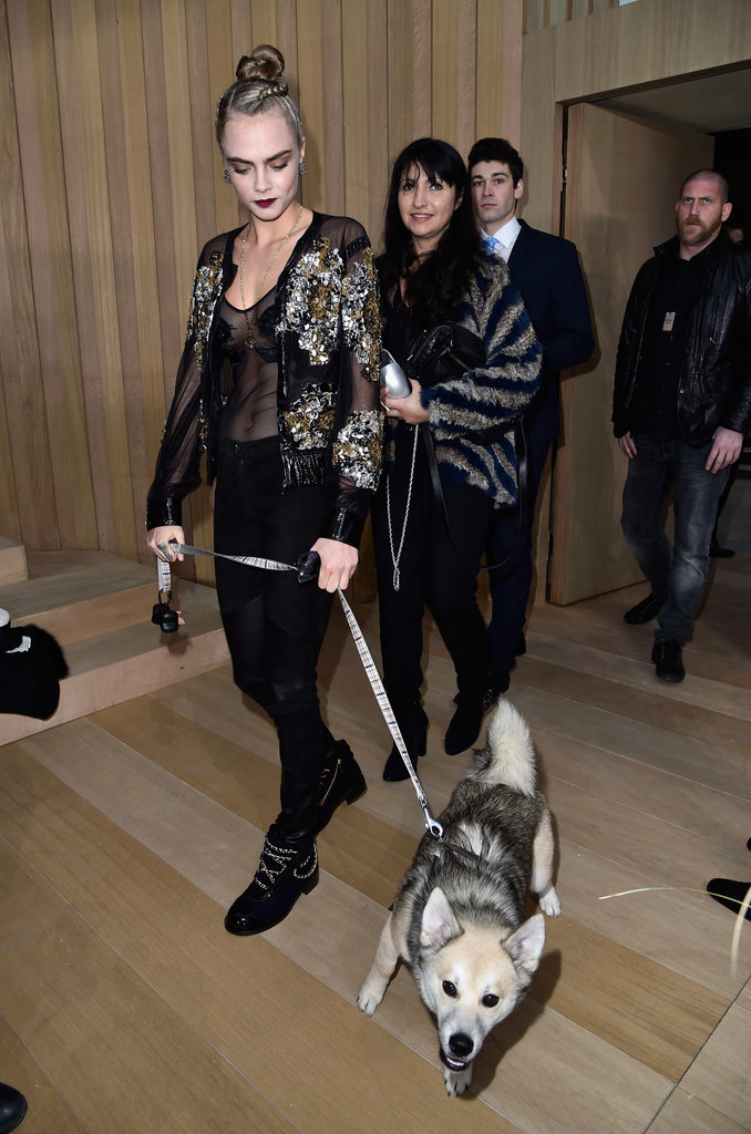 Front-row-chanel-spring-2016-couture-show-cara-dog-5