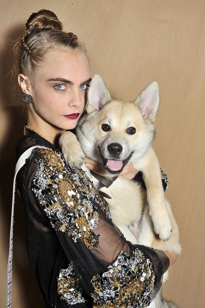 Cara Delevingne và chú chó cưng Leo