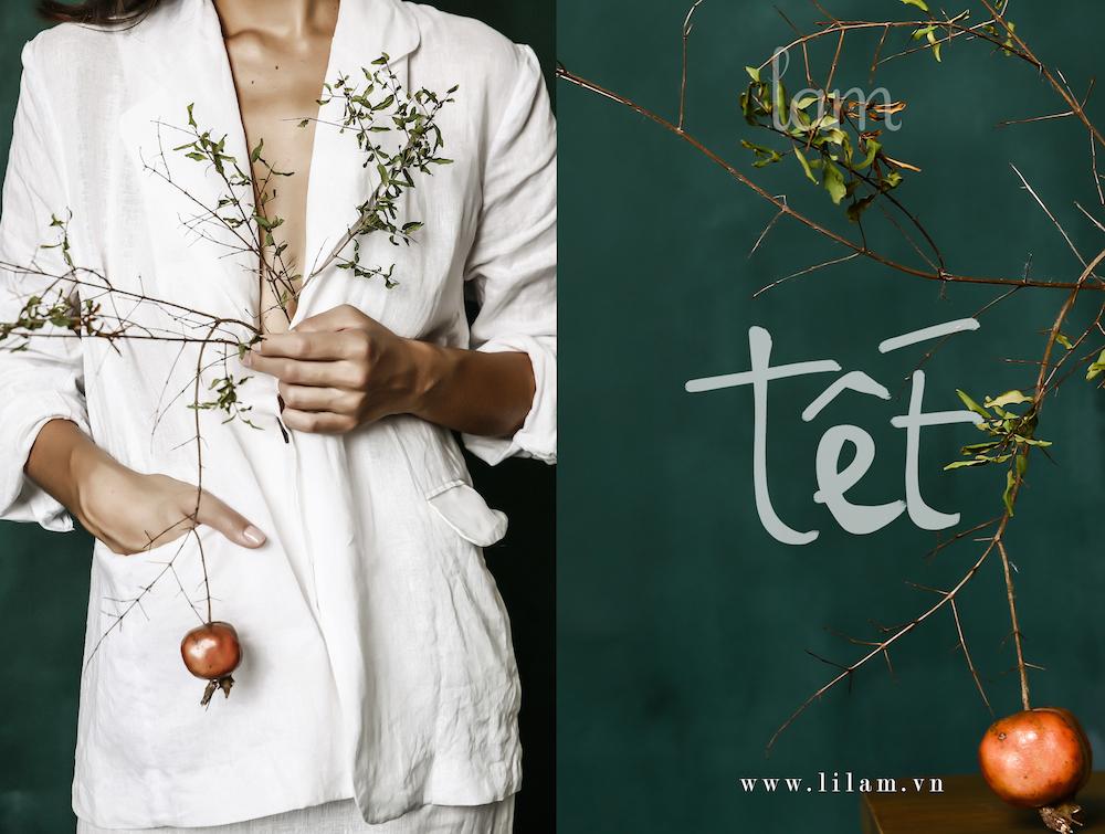 LI-LAM-TET-2016-01