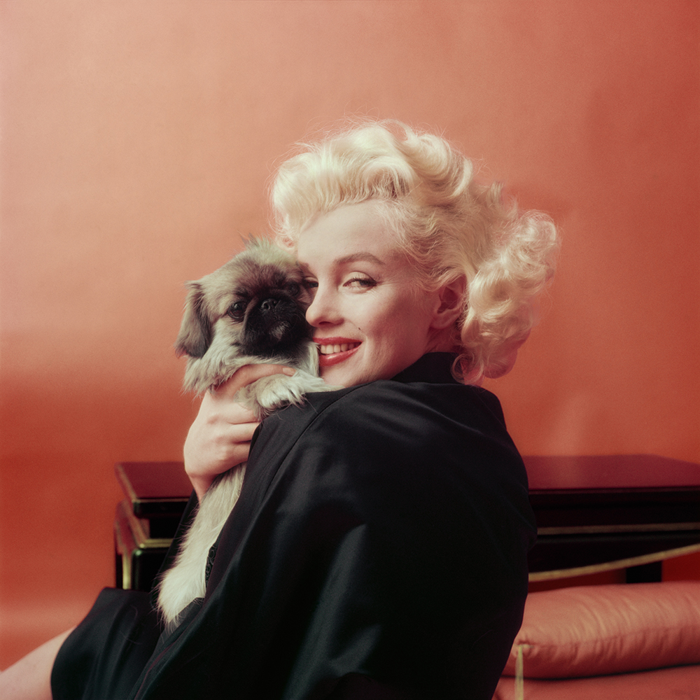 Marilyn Goes Oriental with Pekinese Dog, NY, 1955 © Milton H Greene / Archive Images