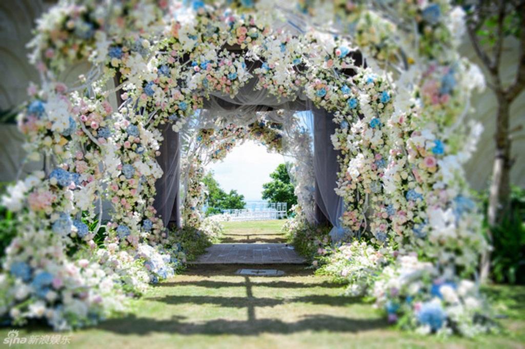 Hàng nghìn bông hoa màu xanh và trắng