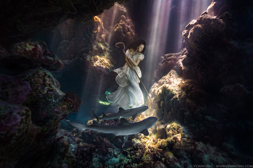 i-tied-down-a-model-underwater-with-sharks-swimming-around-her-12__880