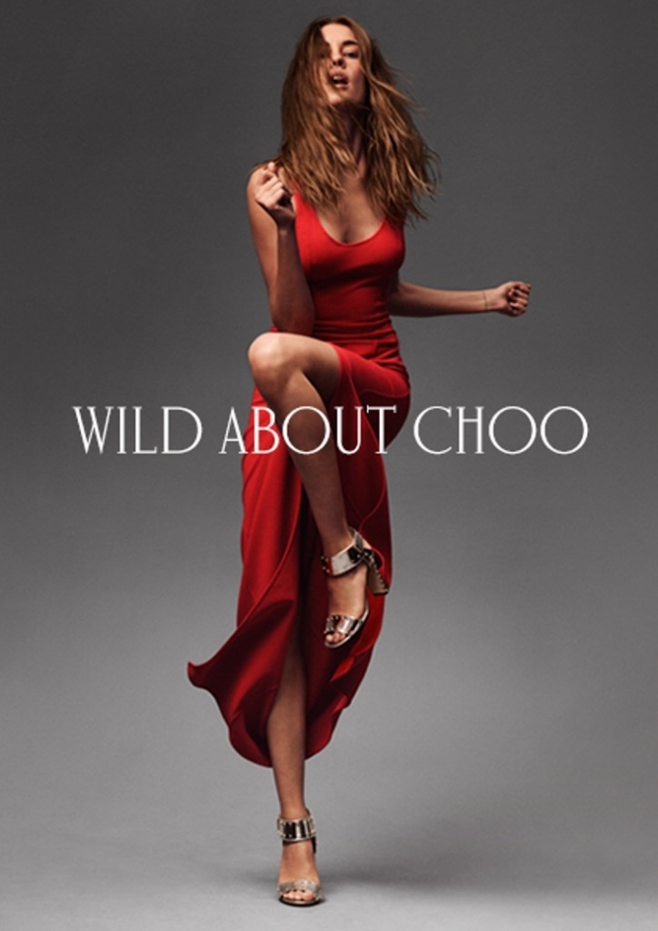 Wild About Choo Window Layout