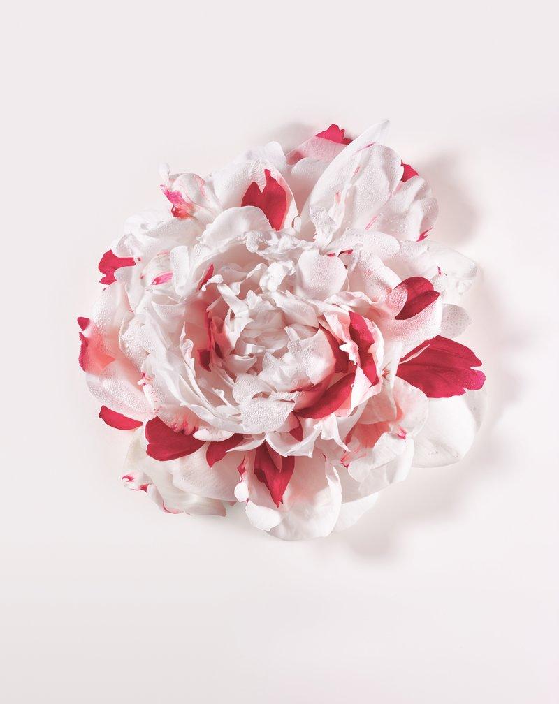 Miss Dior Eau de Perfum 04