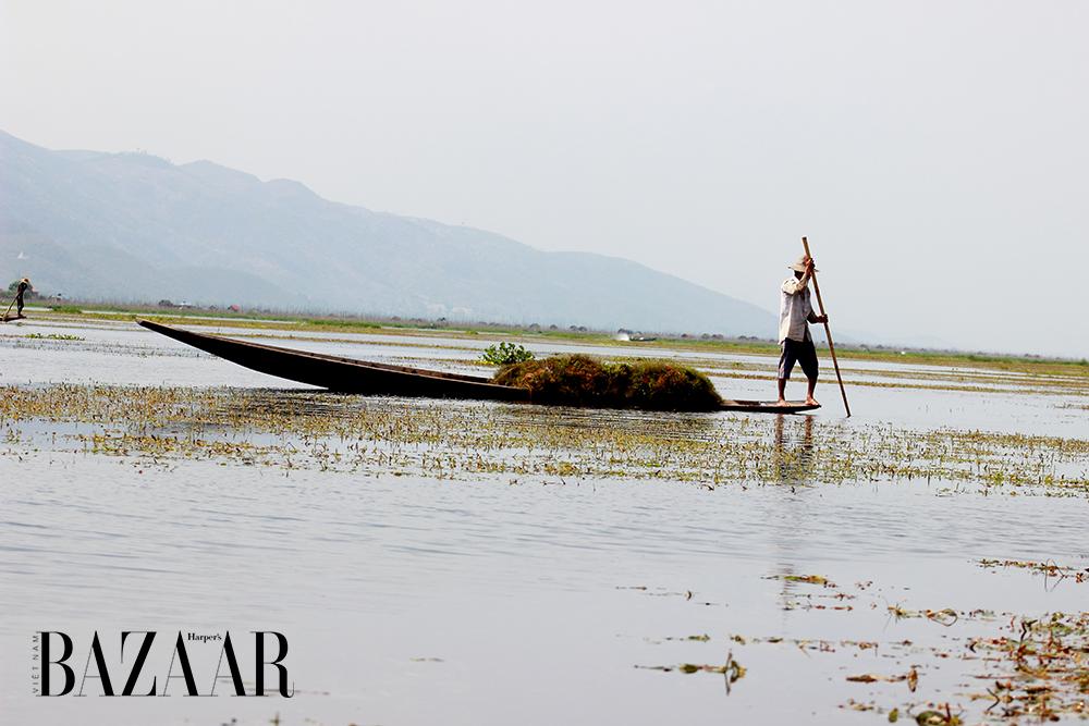 Hồ Inle Lake Myanmar 11