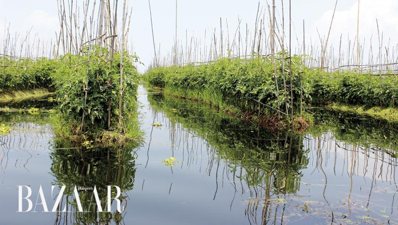 Hồ Inle Lake Myanmar 2