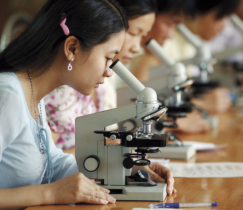 Hội nghị Phụ nữ Việt Nam-2
