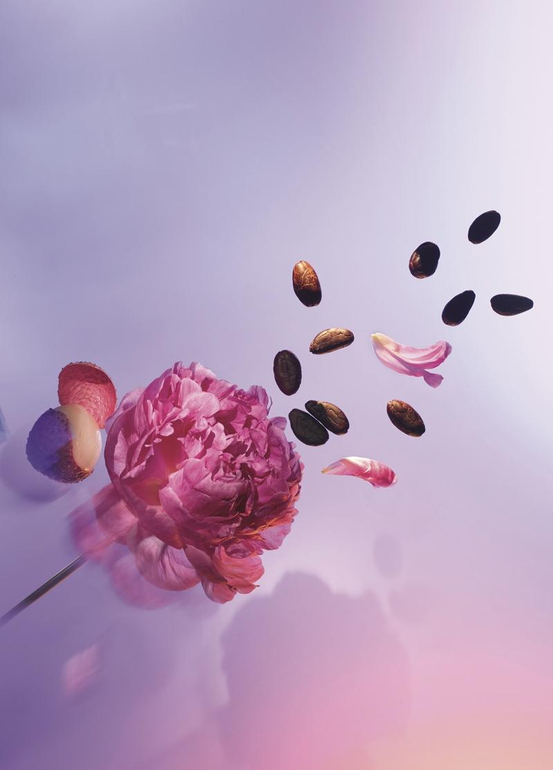 nước hoa Attrape-Rêves