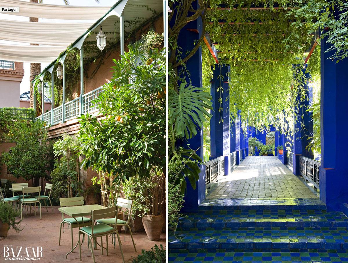 Trải nghiệm cảm giác ăn sáng trong vườn như Yves Saint Laurent, tại Cafe Majorelle.