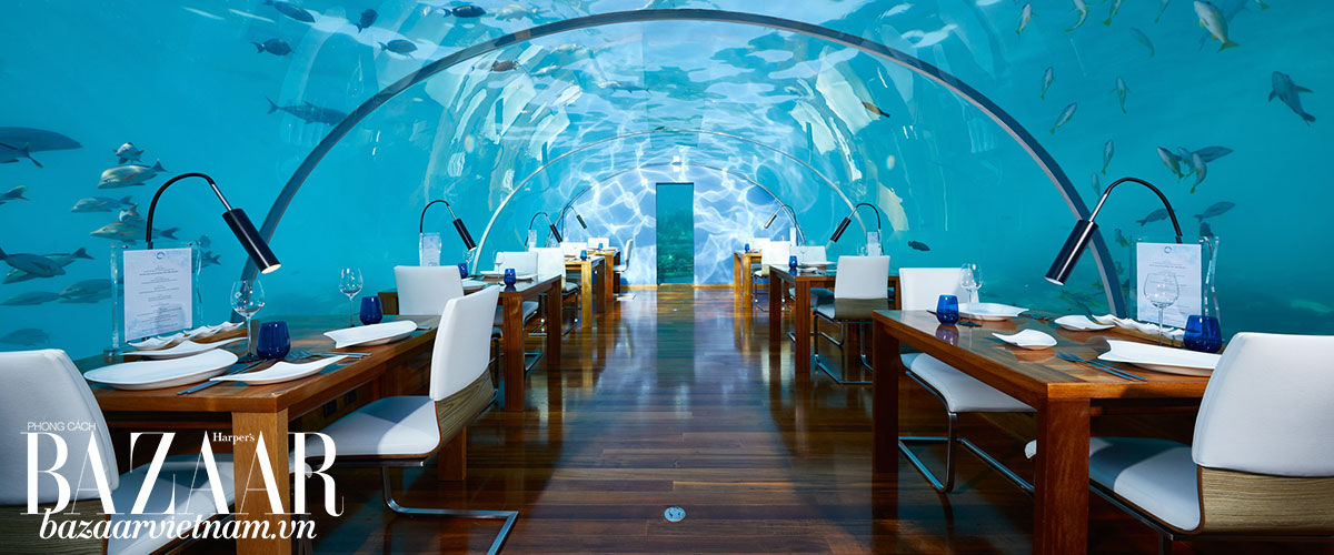Nhà hàng dưới đáy đại dương, Ithaa