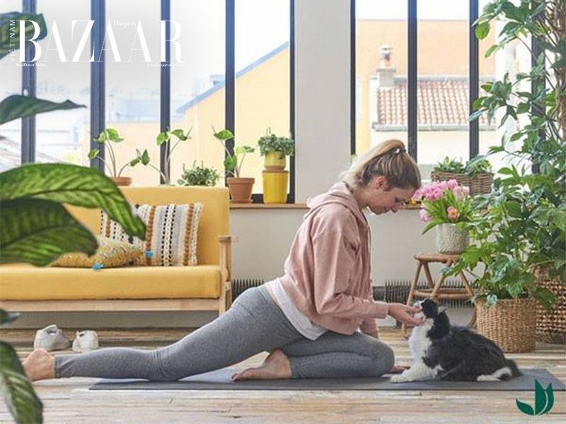 5 bài tập yoga giúp giảm đau thắt lưng đơn giản 1