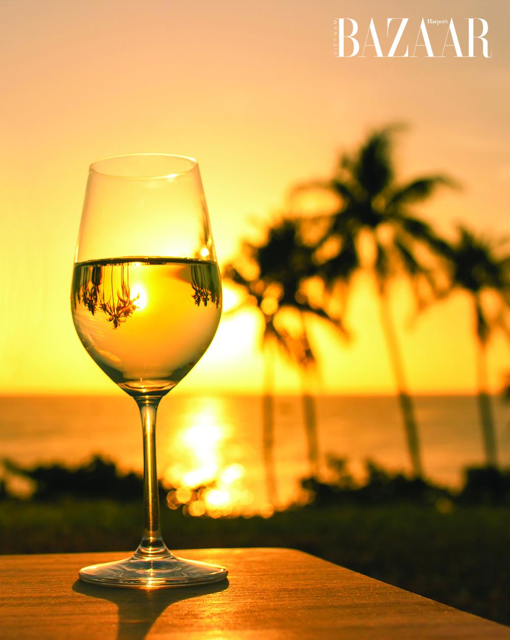 rượu vang trắng chardonnay 01