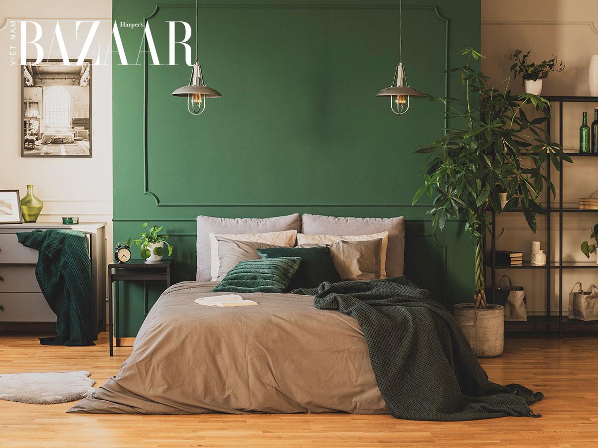 trang trí nhà màu xanh rêu