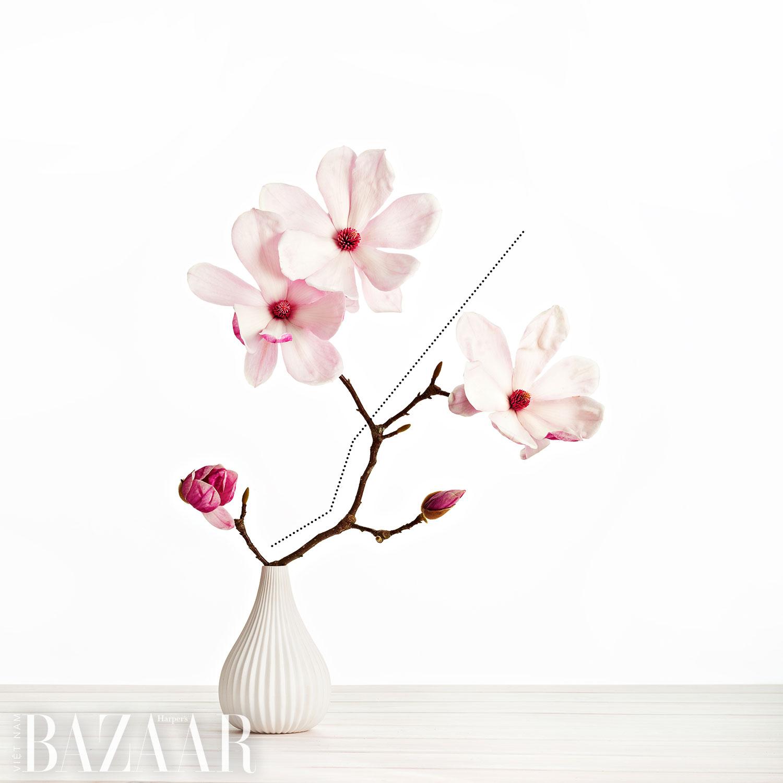 5 yếu tố trong bộ môn cắm hoa nghệ thuật: Line