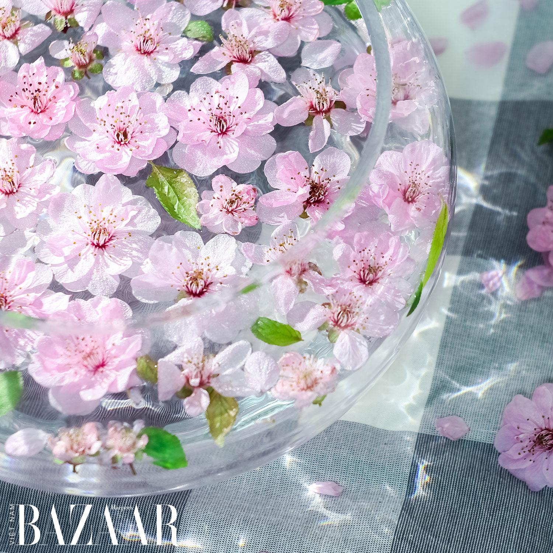 5 yếu tố trong bộ môn cắm hoa nghệ thuật: Colour
