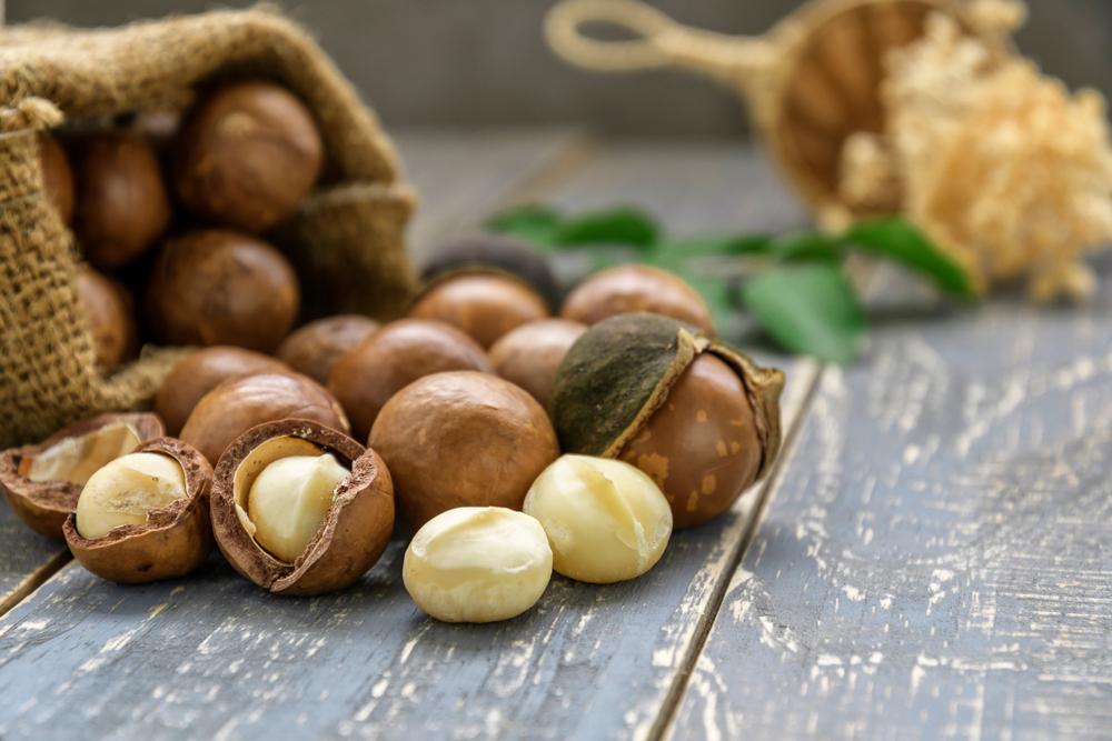 Đói bụng nên ăn gì? nên ăn hạt macca