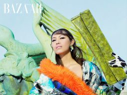 Julia Lee, Người mẫu gốc Việt thành công trên đất Mỹ