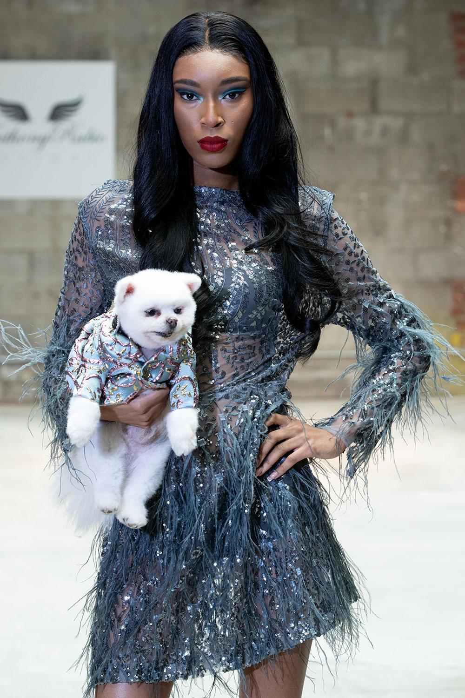 Anthony Rubio ra mắt thời trang cún cưng tại Tuần lễ thời trang New York 3
