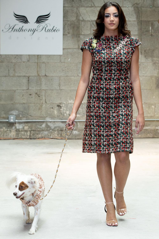 Anthony Rubio ra mắt thời trang cún cưng tại Tuần lễ thời trang New York 4