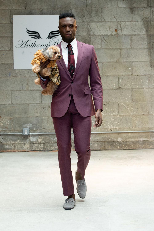 Anthony Rubio ra mắt thời trang cún cưng tại Tuần lễ thời trang New York 5