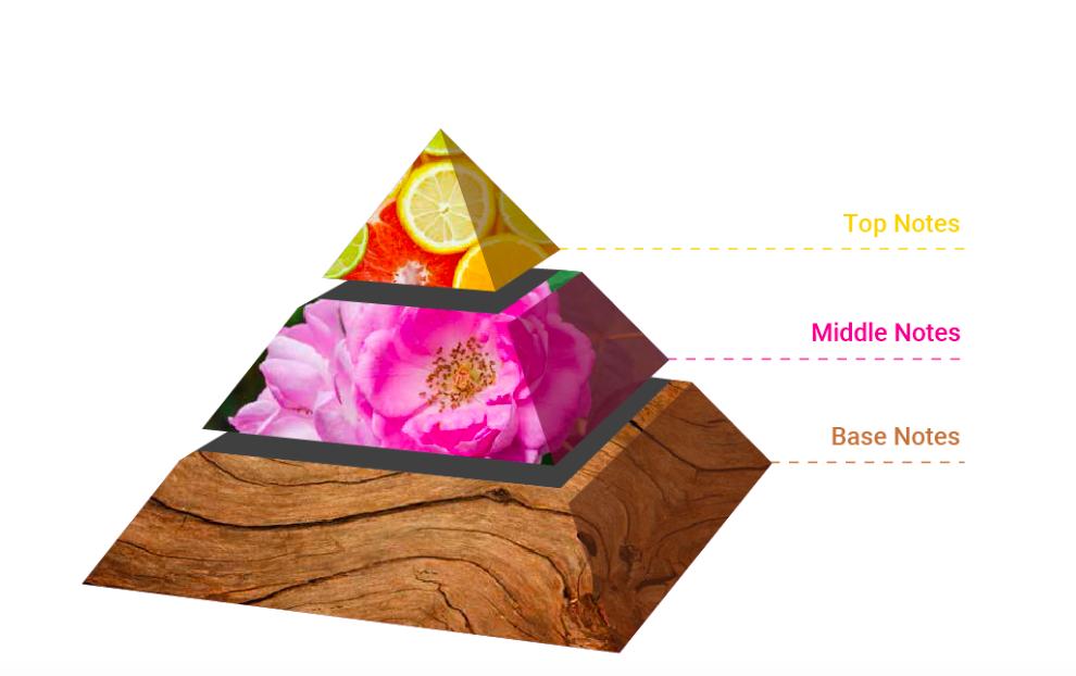 3 tầng hương nước hoa