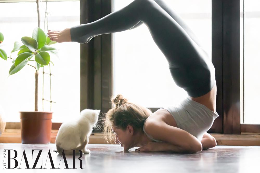 Yoga giúp giảm các cơn đau mãn tính