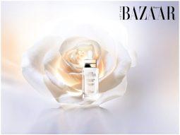 DIOR-prestige-white-in-light-feature-image