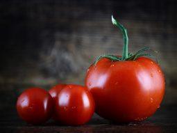 cà chua có tác dụng gì