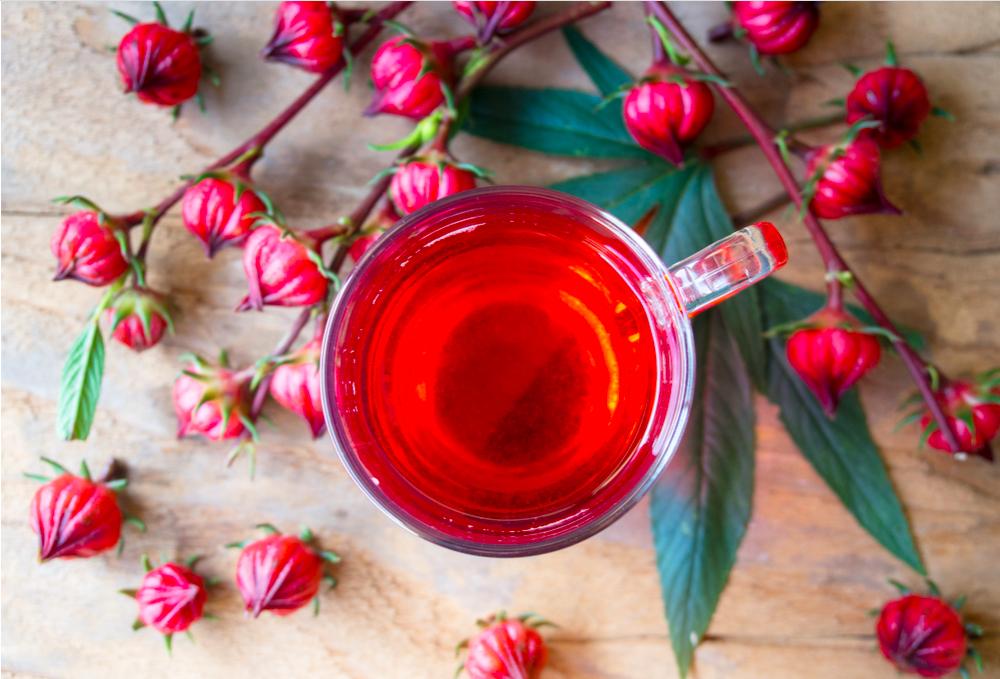 Hoa atiso đỏ có thể tốt cho gan