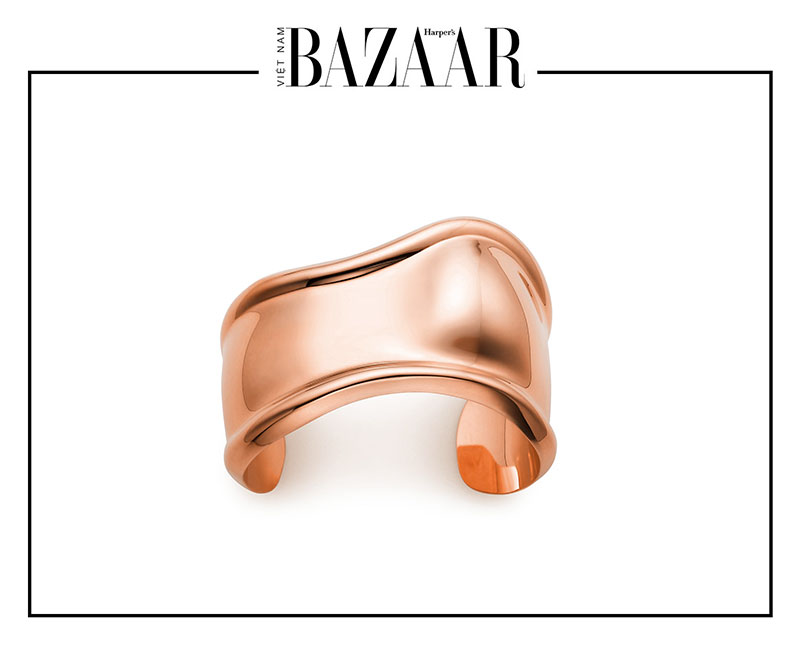 5 món trang sức độc đáo nhất Elsa Peretti thiết kế cho Tiffany & Co 4