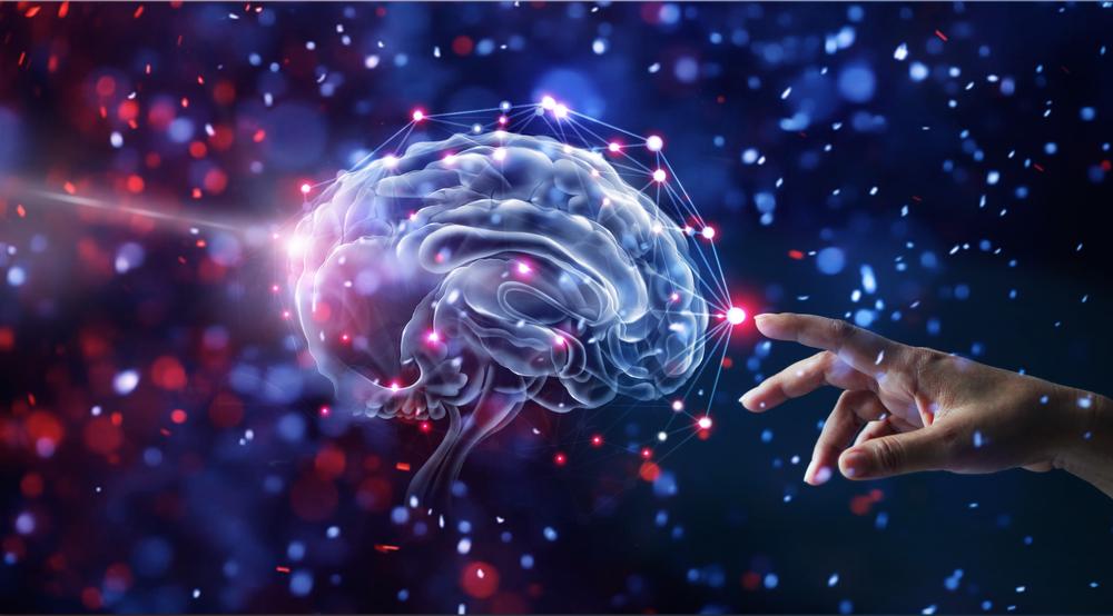 Hạnh nhân tốt cho não