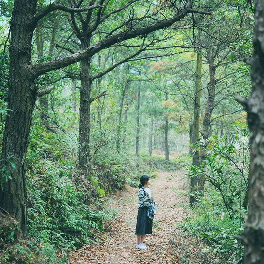 Địa điểm du lịch gần Hà Nội trong 1 ngày:Sống ảo ở My Hill
