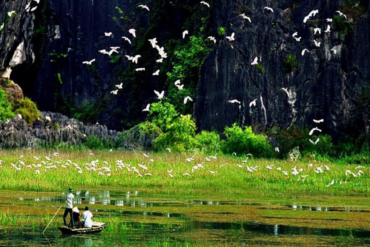 Tam Cốc, các địa điểm du lịch Ninh Bình