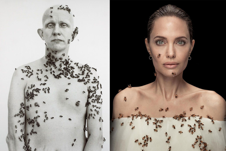 Angelina Jolie để ong bò khắp người nhằm kêu gọi bảo vệ môi trường