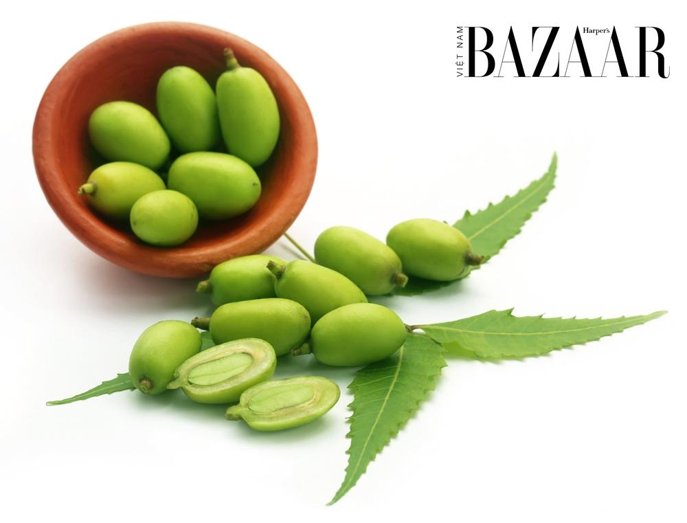BZ-thanh-phan-duong-da-co-truyen-la-neem-1.