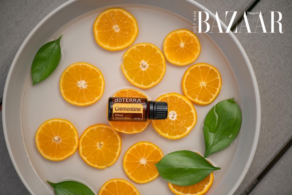 BZ-tinh-dau-chua-pms-orange-oil-pexels-doterra-international-llc-3962608