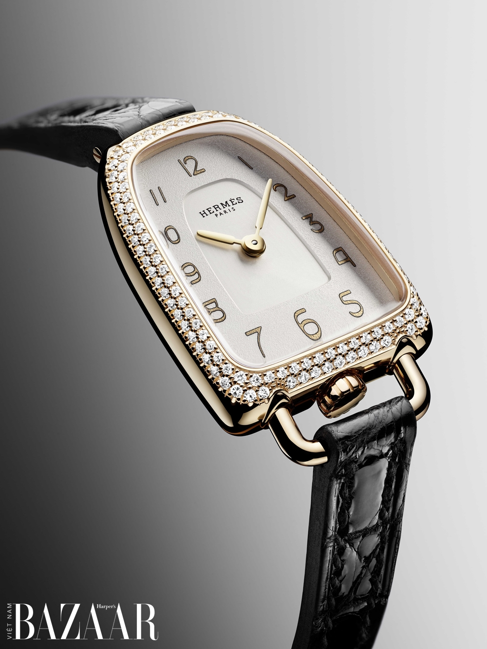 BZ-Galop-d-Hermes-PM-Close-Up-copyright-Joel-Von-Allmen-1